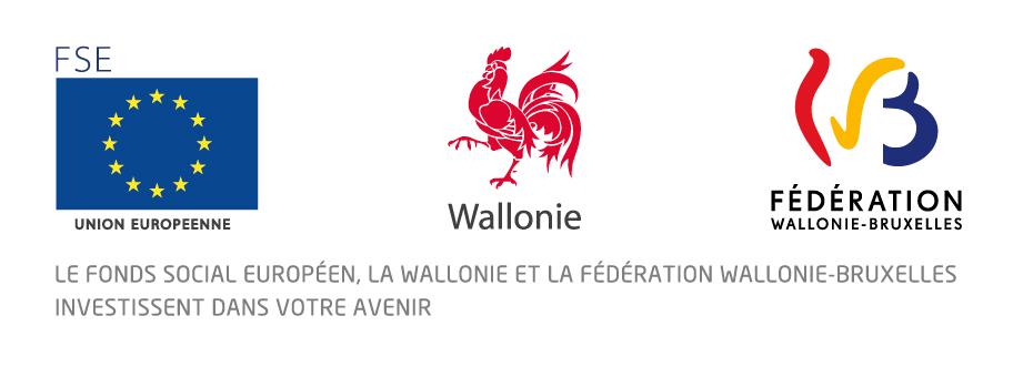 image logo_FSEwallonieFWB.jpg (82.8kB)